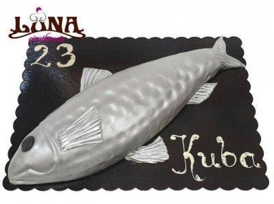 ex023-tort-ryba-3d-led